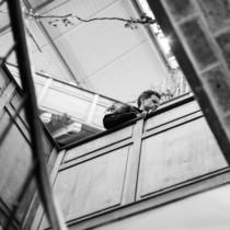 marionhphotography-ANDY_FESTIVAL-2016-Bastille_Design_Center-Paris_11-HD-72